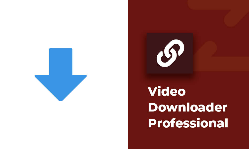 Video Downloader Professional Chrome Extension - Best free video downloader